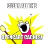 How to clear all caches in OpenCart 3.0.2.0