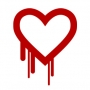 What is The Heartbleed Bug?