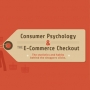 Consumer Psychology at the Ecommerce Checkout